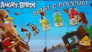 Angry Birds. 13225.jpeg