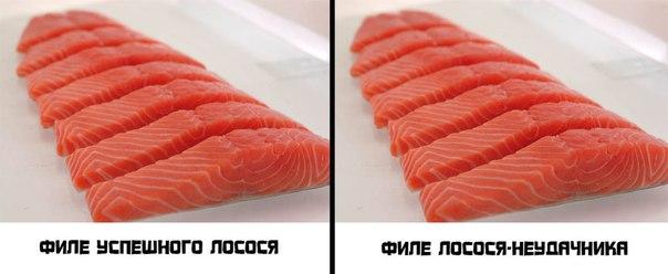 Люди племени лосося